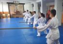 Çocuklar aikido-jo çalışması